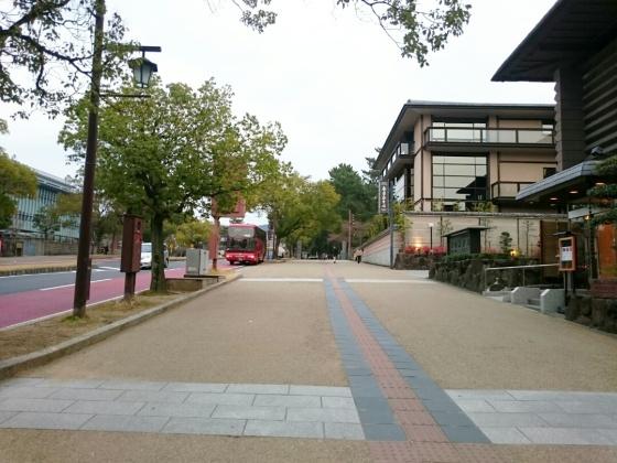Jalan kaki ke Nara park.
