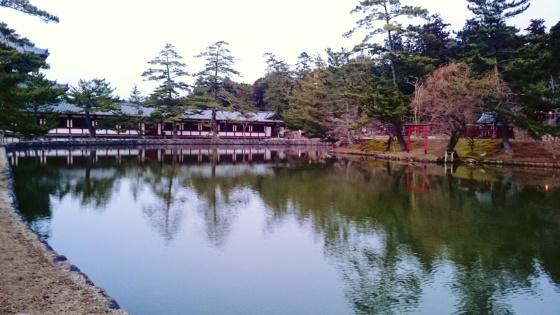 Kolam di dalam Nara park.