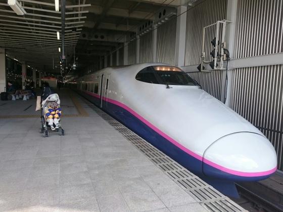 Yamabiko Shinkansen.