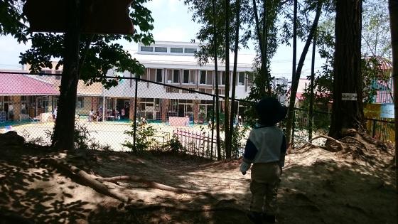 Eiji memandang TK dari atas bukit.